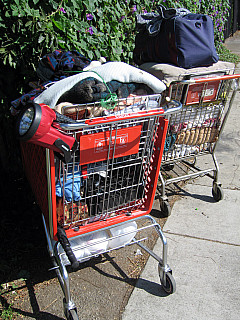 Los Angeles - Homeless Cart