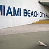 Miami - Beach Hall