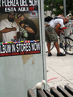Miami - Boys