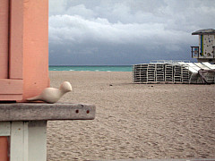 Miami - Night Beach