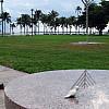 Miami - Palm Trees
