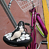 Miami - Pink Bike