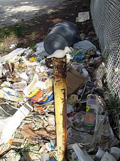 Miami - Trash