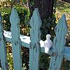Santa Fe - Green Fence