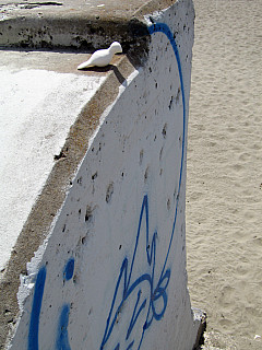 San Francisco - Beach Blue