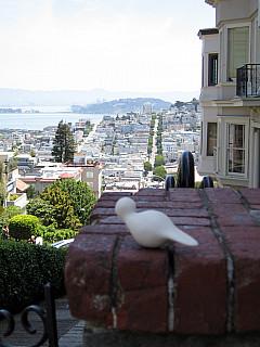 San Francisco - City Scape