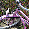San Francisco - Pink Bike