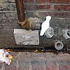 Boston - Drain Pipes