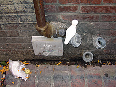 Boston - Drain Pipes