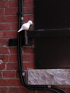 Boston - Brick Window