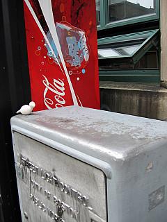 Boston - Coke Cola