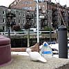Boston - Harbor row