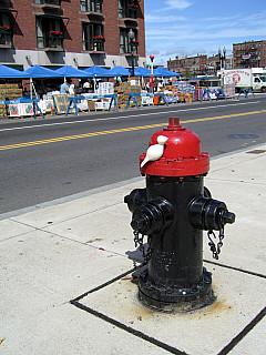 Boston - Hydrant