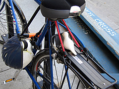 Chicago - Blue Bike
