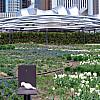 Chicago - Garden Building