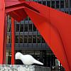 Chicago - Red Calder