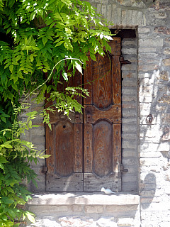Italy, Assisi - Vine Door