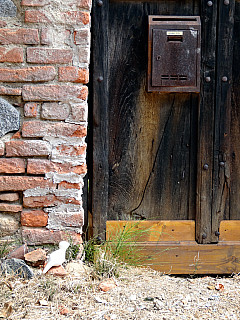 Italy, Biella - Wooden Door Detail