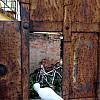 Italy, Florence - Rust G Door