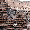 Italy, Rome - Colliseum Inside