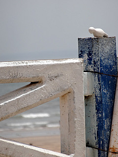 Morocco - Ocean Post