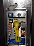 New York - Pay Phone