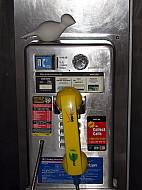 New York - Pay Phone