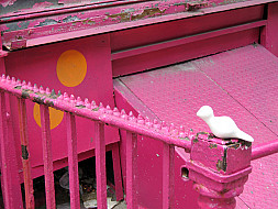 New York - Pink Rail