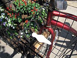 New York - Red Bike