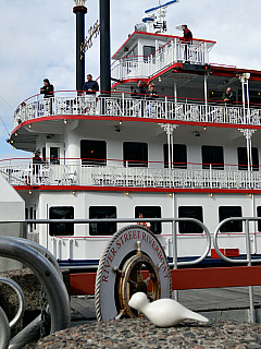 Savannah, Georgia - Ferry Boat