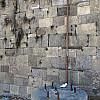 Savannah, Georgia - Moss Wall