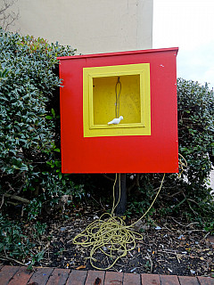 Savannah, Georgia - Red and Yellow Box