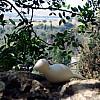 Israel - Hike Hill