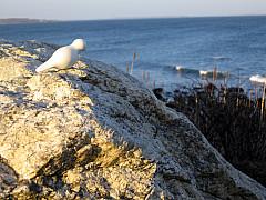 Rhode Island - At the Beach