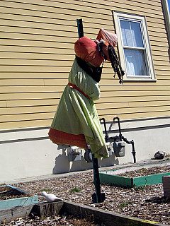 Rhode Island - Scarecrow