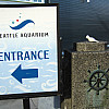 Seattle - Aquarium