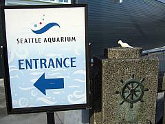 Seattle - Aquarium