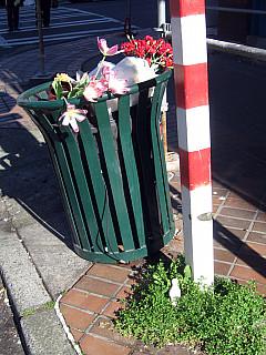 Seattle - Flower Trash
