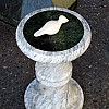 Seattle - Marble Pedestal