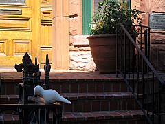 DNC - Brick Stairs