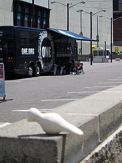 DNC - ONE.org Bus