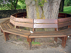 Germany - Circle Bench