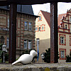 Germany - House Bars