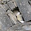Germany - Stone Wall