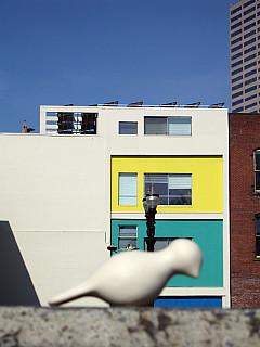 Portland - 3 Colors