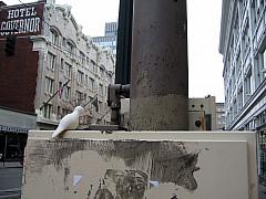 Portland - City Corner