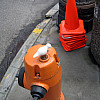 Portland - Orange Fire Hydrant