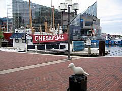 Baltimore - Chesapeake
