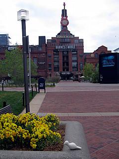 Baltimore - Hard Rock