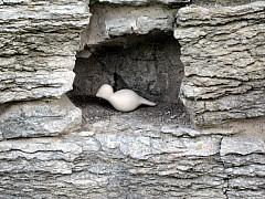 Minneapolis - Bridge Wall Hole
